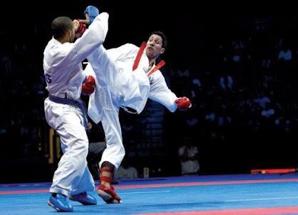 Shotokan Karate 1.1.2 screenshot 1