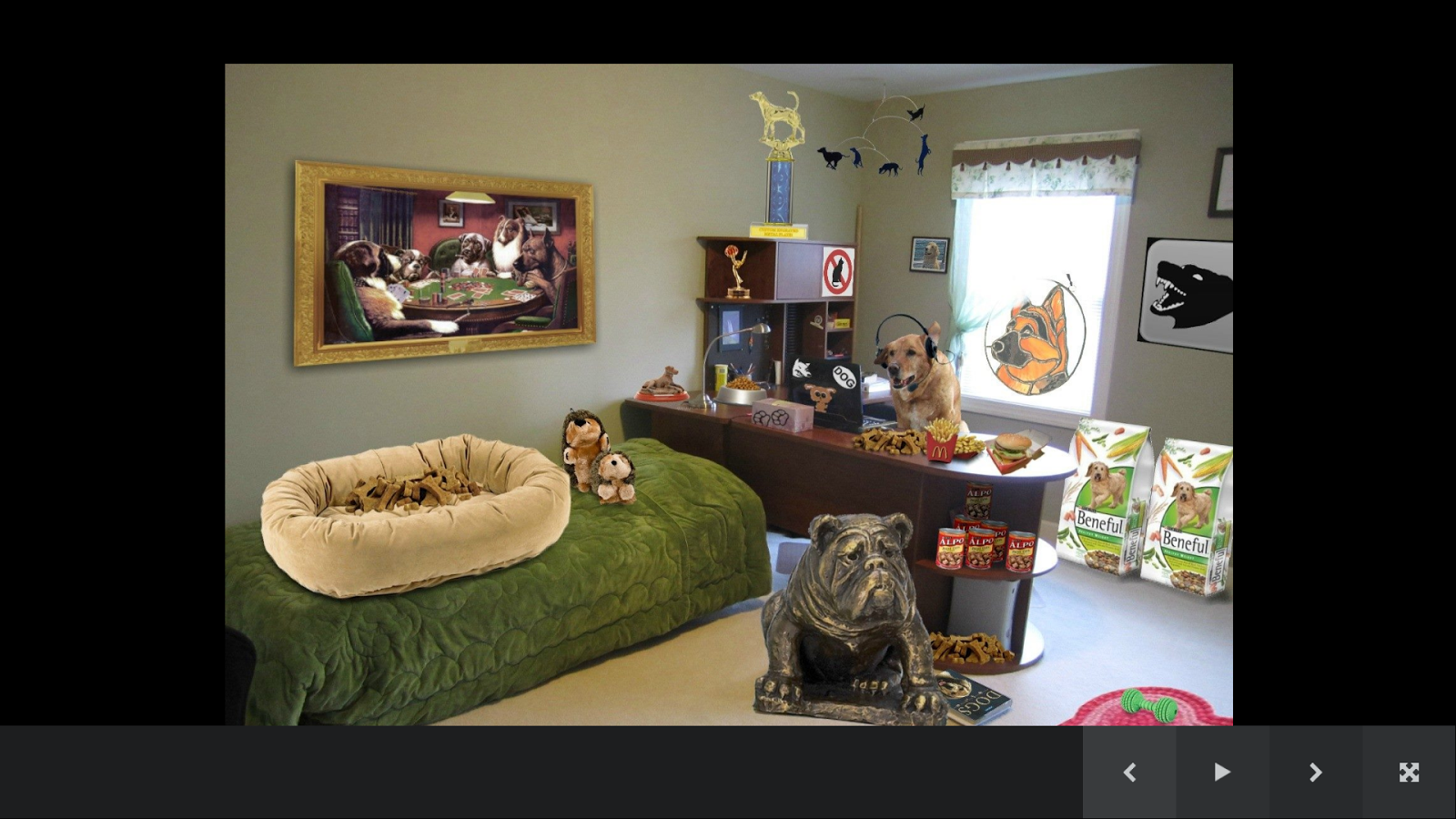 Dog Room Decor 1.2 APK Download - Android Lifestyle Apps