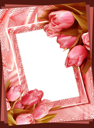 Flower Photo Frames 4.0 APK Download - Android Photography Apps