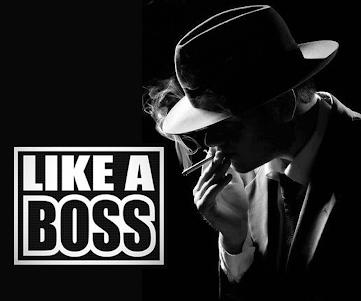 MLG Like A Boss Sticker Photo Studio 1.00 screenshot 1