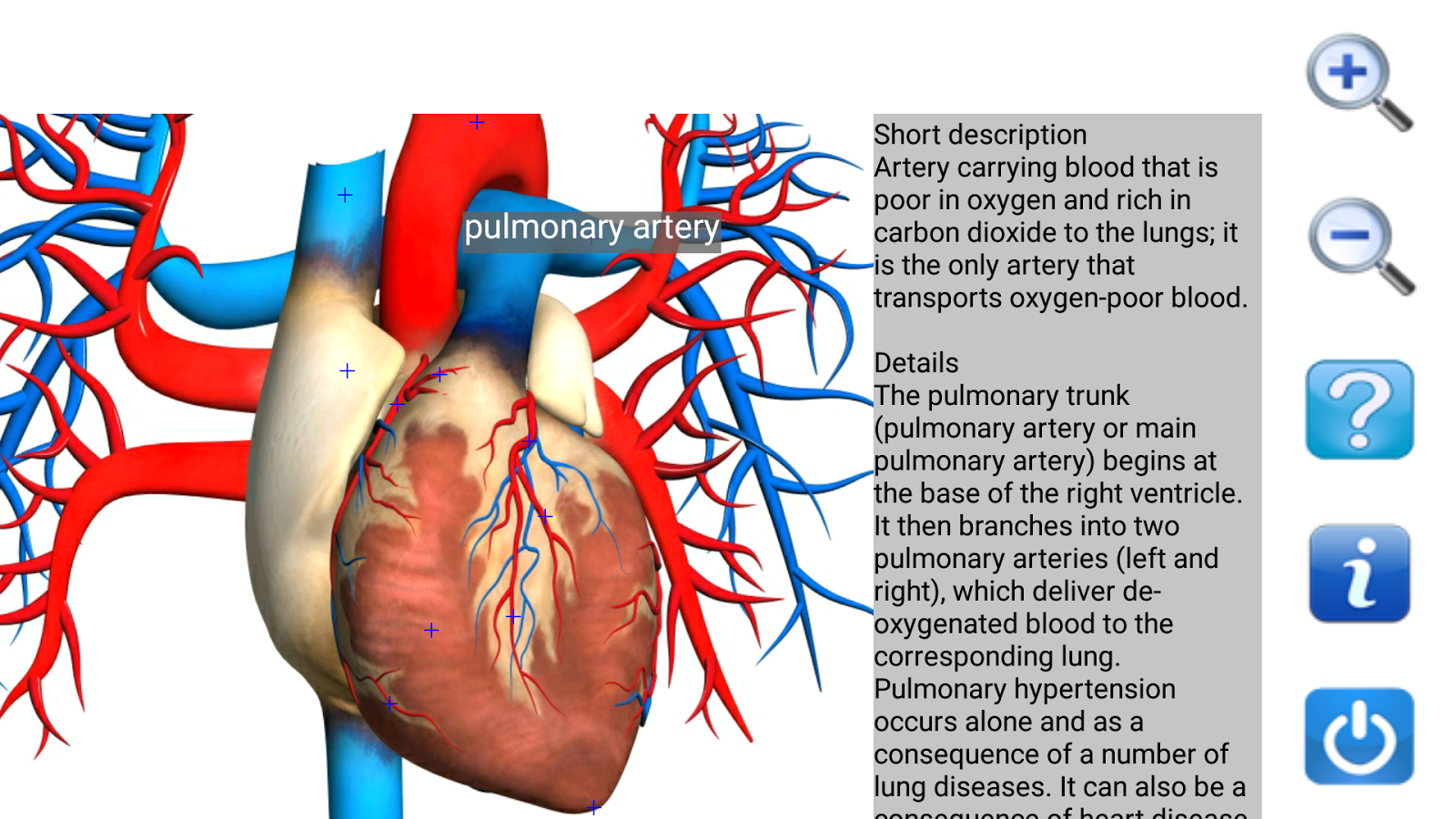 Visual Anatomy Free 5.5 APK Download - Android Medical Apps