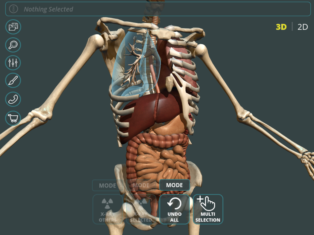 Visual Anatomy 3d Human 12 Apk Download Android Medical Apps