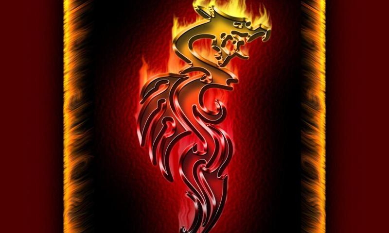 Fire Dragons Wallpapers 50 Screenshot 1 2