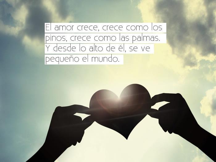 Frases Bonitas De Amor Con Imagenes Romanticas 1 3 Apk Download