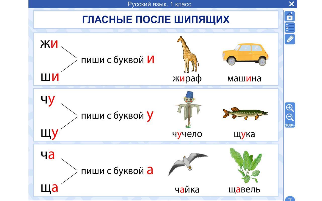 правила русского языка 1 класса в картинках