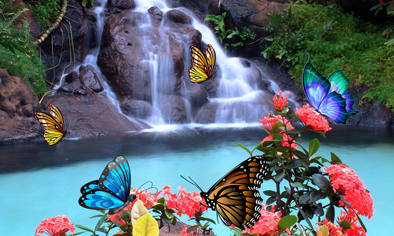 3D Butterfly Live Wallpaper 1.4 APK Download