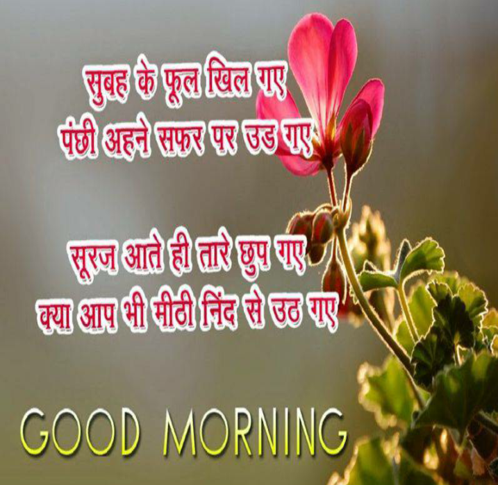 Hindi Good Morning HD Images 1.0.58 APK Download - Android