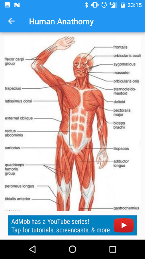 Human Anatomy Guide 100 Apk Download Android Education Apps