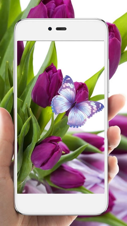Purple tulip hd live wallpaper 116 apk download android purple tulip hd live wallpaper 116 screenshot 3 thecheapjerseys Image collections