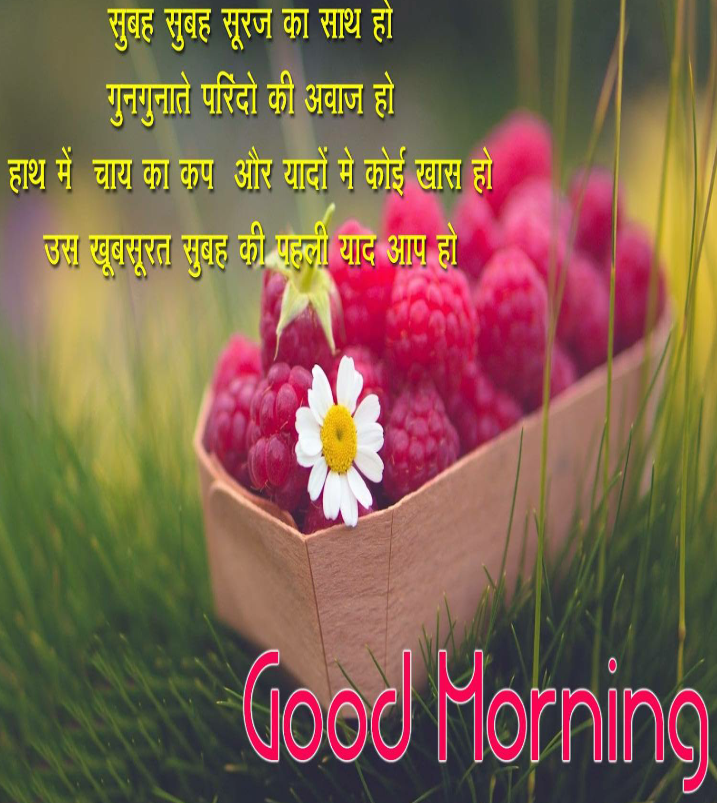 good morning pictures for whatsapp 2017 download