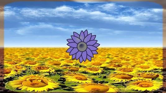 Sunflower Torch 1.0 screenshot 2