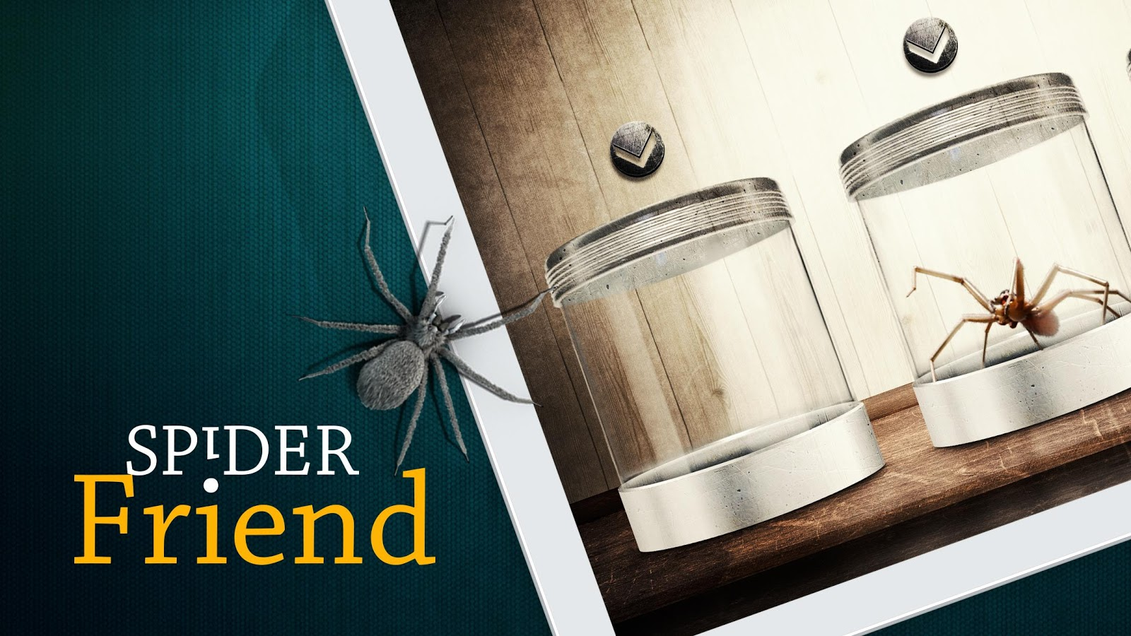 Spider Friend 3 1 APK Download Android Educational Games