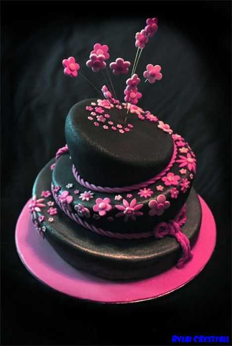 Birthday Cakes Design Ideas 11 Apk Download Android Lifestyle Apps