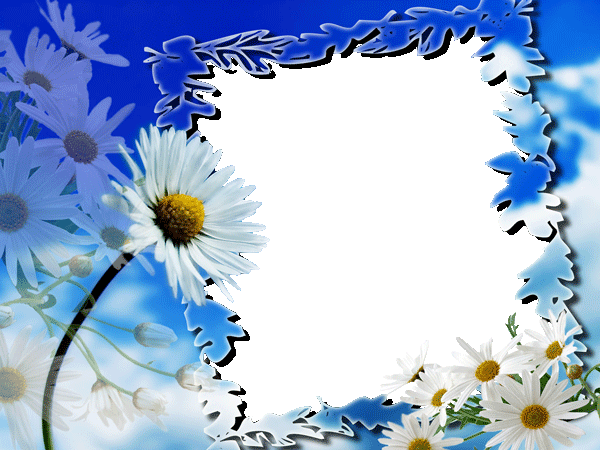 Flowers photo frames Animated 1.0 APK Download - Android Photography ...