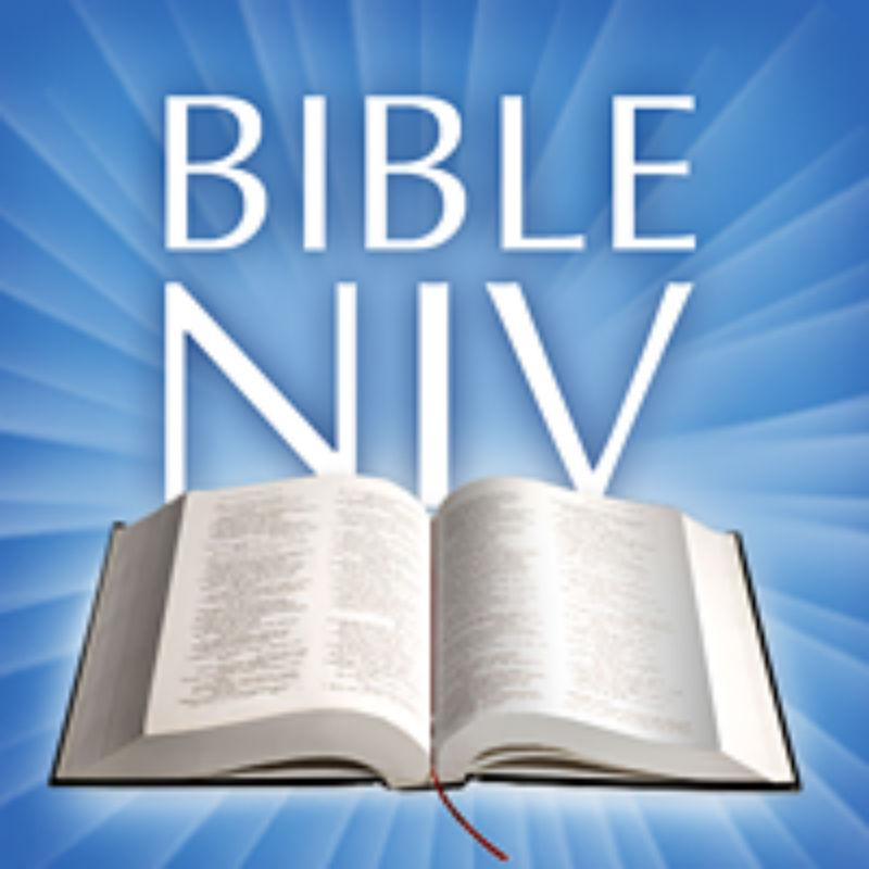 NIV Bible Offline 1 0 APK Download - Android Books & Reference Games