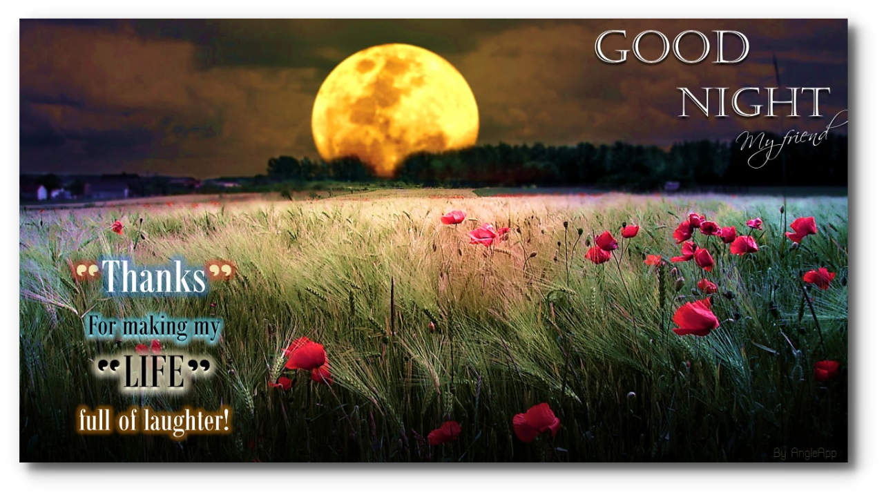 1280 x 720 png 1330kBGoodnight