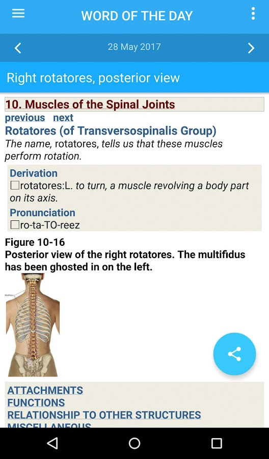 the muscular system manual 8 0 239 apk download android medical apps