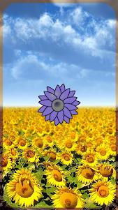 Sunflower Torch 1.0 screenshot 1