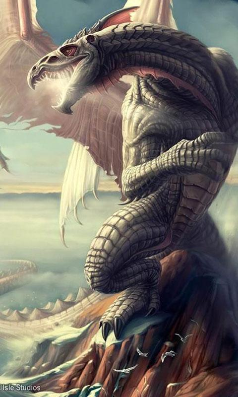 Dragon live wallpapers 1 0 apk download android - Free dragonfly wallpaper for android ...
