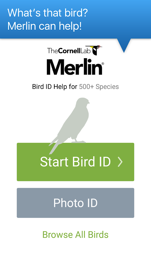 Merlin Bird ID by Cornell Lab of Ornithology APK Download