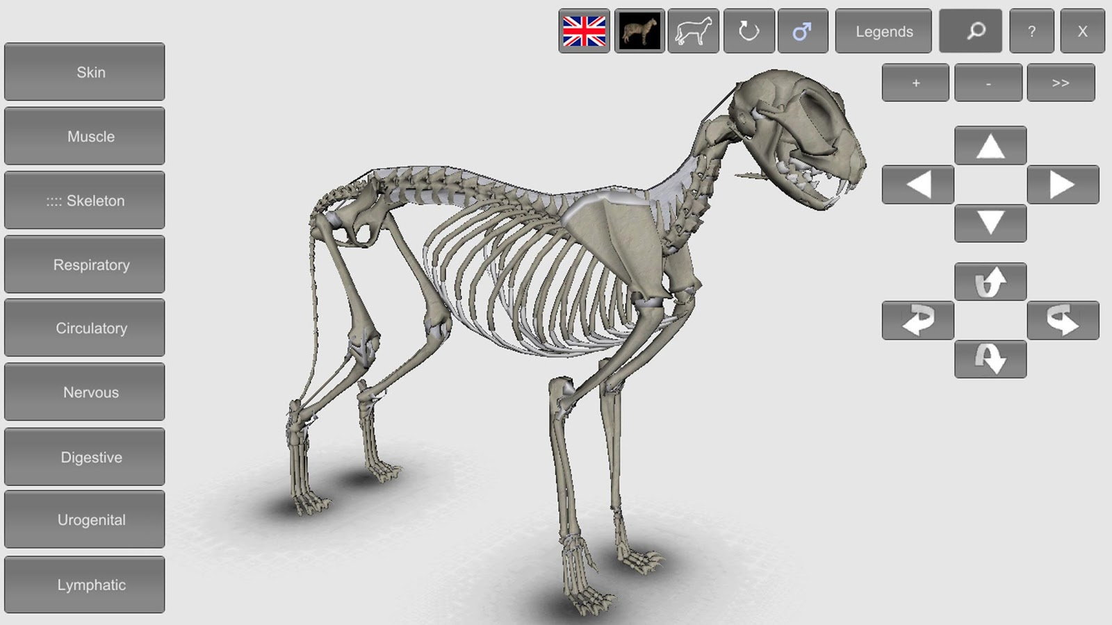 3D Cat Anatomy 1.21 APK Download - Android Education Apps