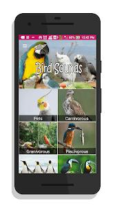 100 Bird sounds 16.0 screenshot 1