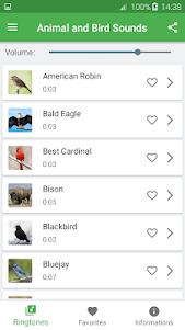 Bird and Animal soundboard 4.7 screenshot 2