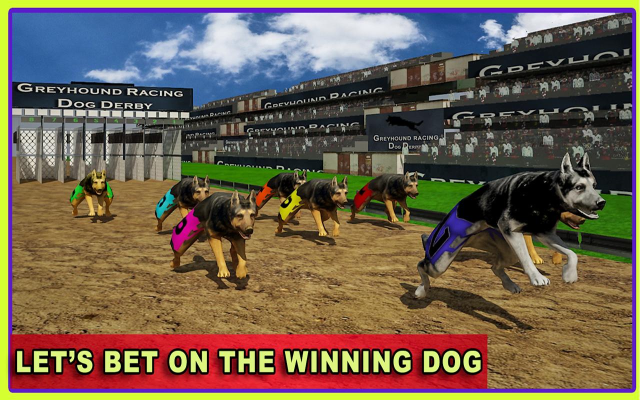Virtual Dog Racing Champions 10 Screenshot 7