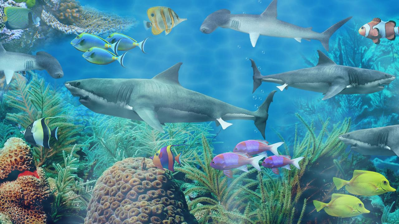 Shark Aquarium Live Wallpaper 11028 Screenshot 1