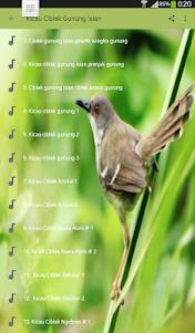 Kicau Burung Ciblek Gunung Isian 1.0 screenshot 2