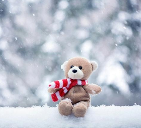 Teddy Bear Wallpaper Hd 1 02 Apk Download Android Entertainment Apps
