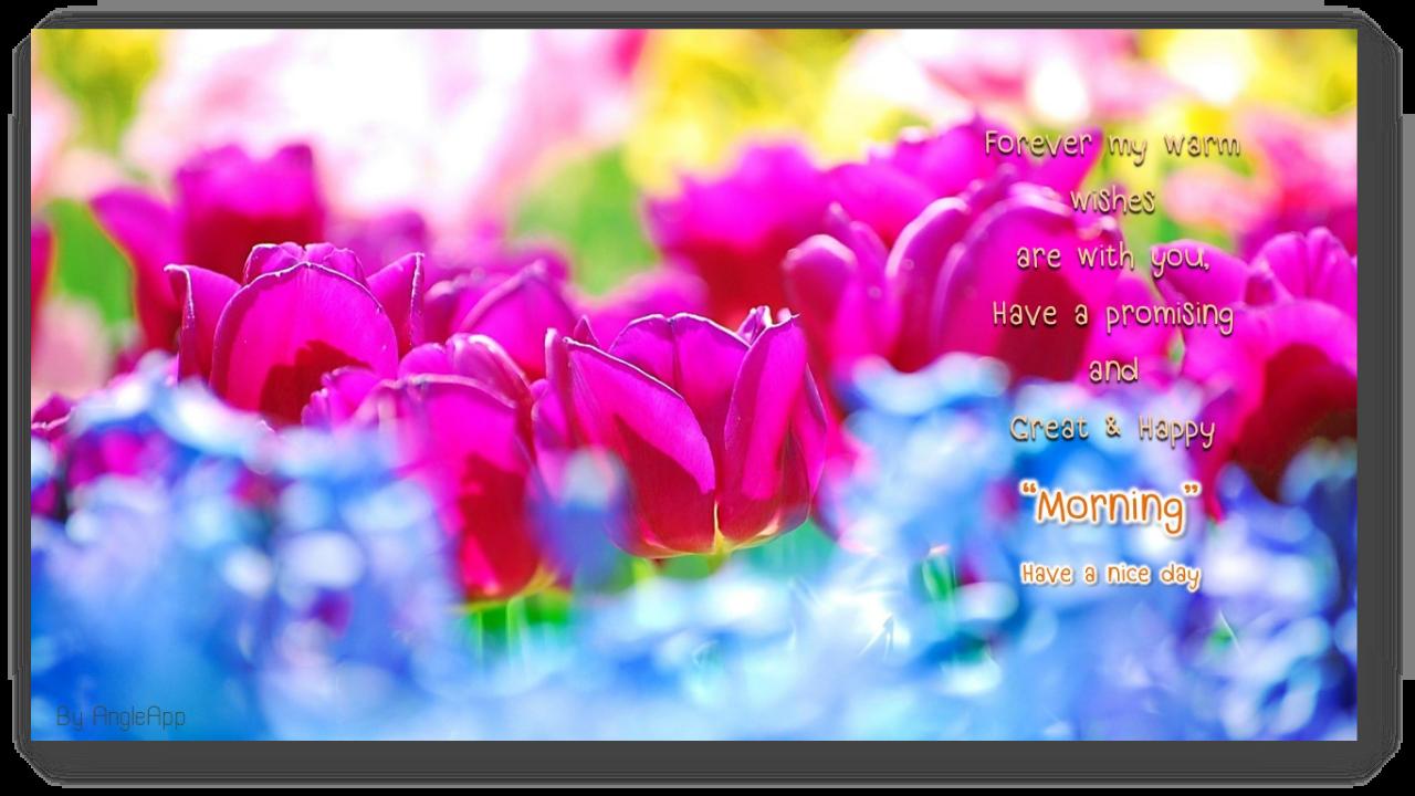 Good morning good night beautiful flower wishes 7210 apk download good morning good night beautiful flower wishes 7210 screenshot 3 izmirmasajfo