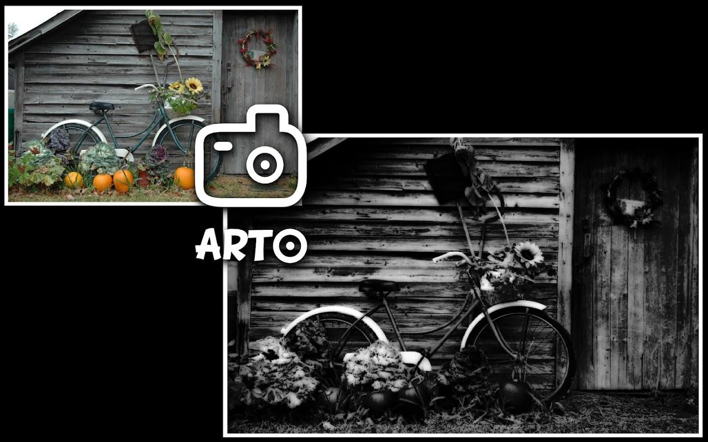 Arto lite black white photo 3 1 screenshot 3