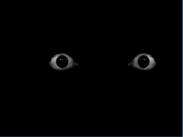 Creepy eyes fear 1.0.0 APK Download