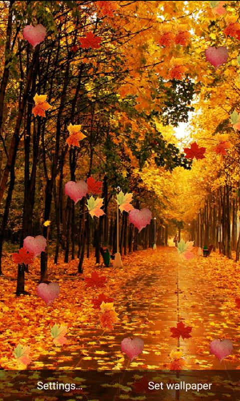 Nature Hd Leaf Live Wallpaper 1 0 Apk Download Android
