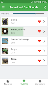 Bird and Animal soundboard 4.7 screenshot 10