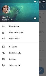 Telegram 8.1.1 screenshot 2
