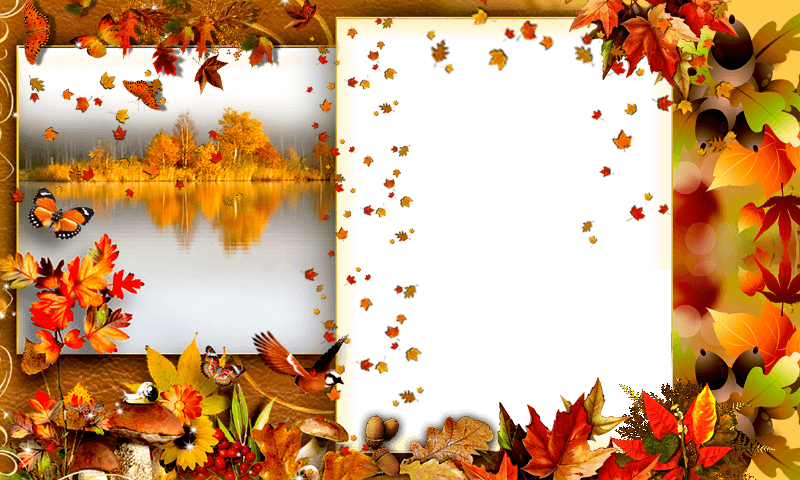 Autumn photo frames Animated 1.0 APK Download - Android Photography Apps