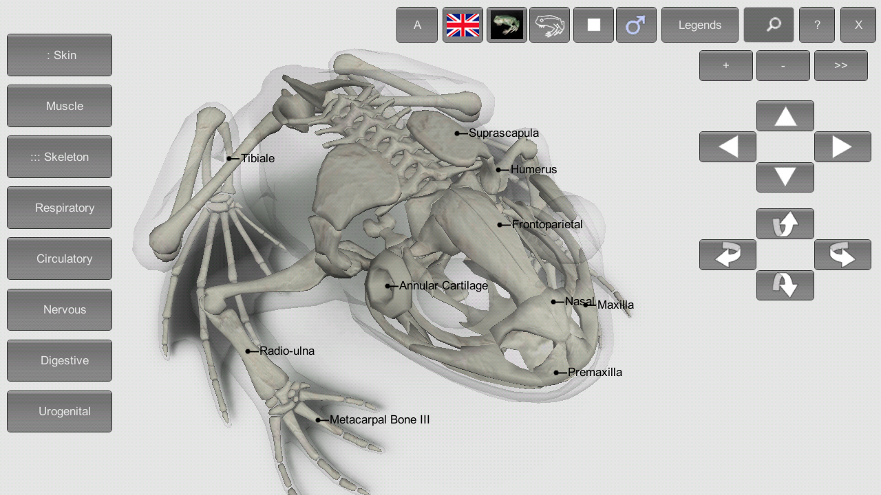 3D Frog Anatomy 1.0 APK Download - Android Education Apps