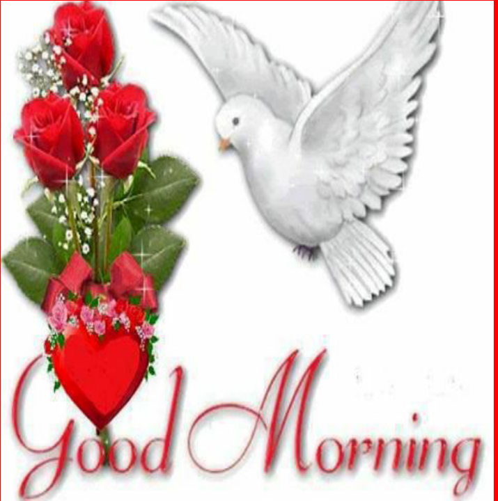 Good Morning Images Hd 2018 174 Apk Download Android Lifestyle Apps