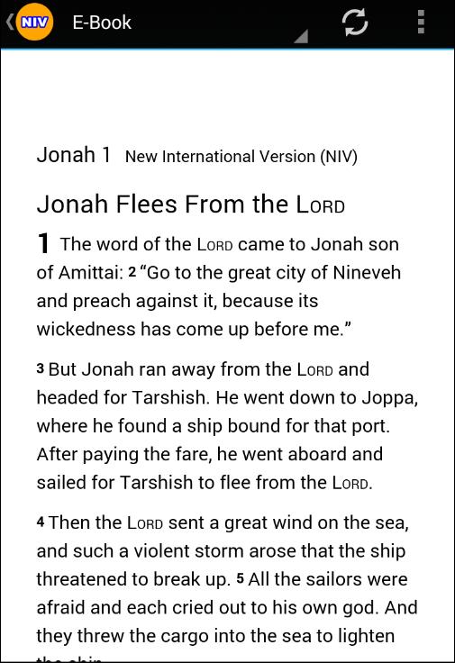 Offline Audio Bible Niv