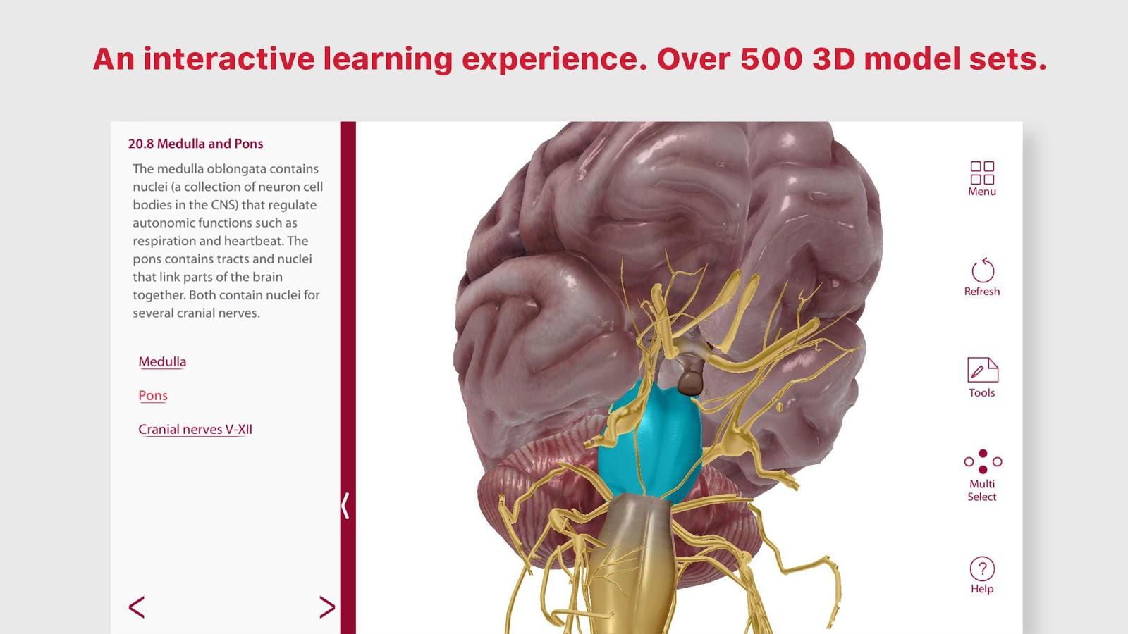 Anatomy & Physiology 5.1.10 APK Download - Android Medical التطبيقات