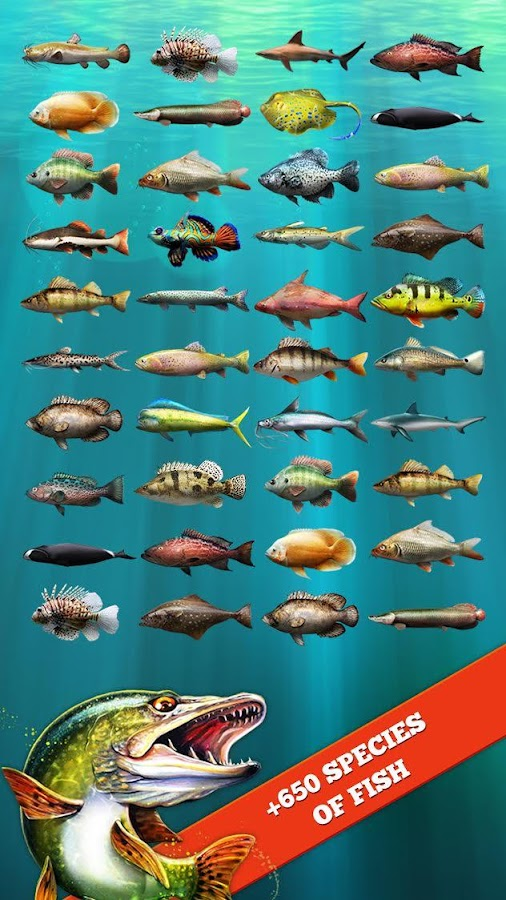 Let 39 s fish sport fishing game 3 2 apk download android for Game and fish