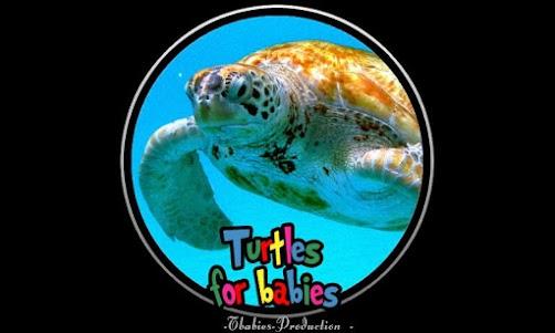 turtles for babies 1.0.0 screenshot 1