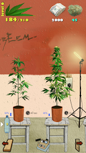 Weed Firm: RePlanted 1.7.38 screenshot 12