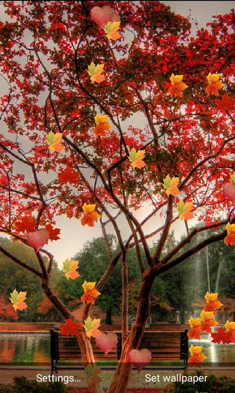 Nature Hd Leaf Live Wallpaper 10 Apk Download Android