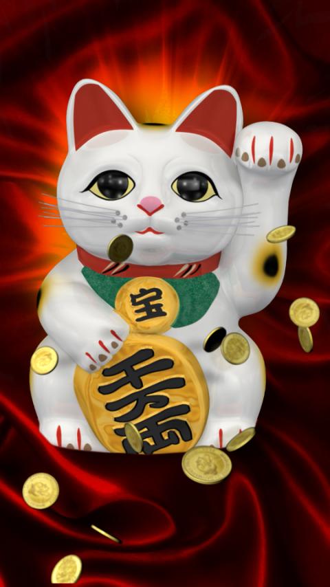Lucy Cat Dvd