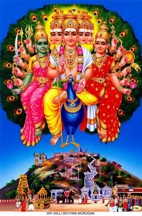 Lord Murugan Wallpapers Hd 113 Apk Download Android