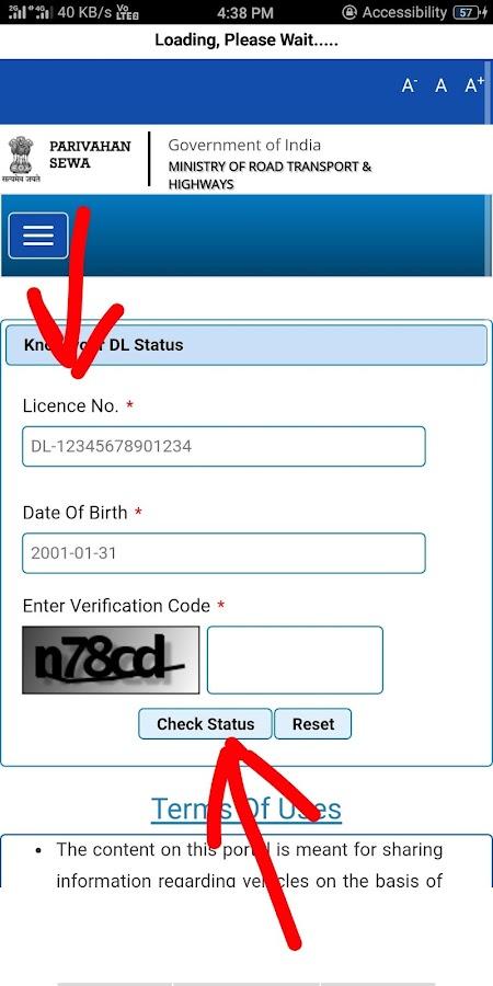 dl licence status