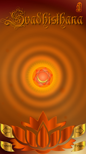 Chakra Cleansing 7.0 screenshot 3
